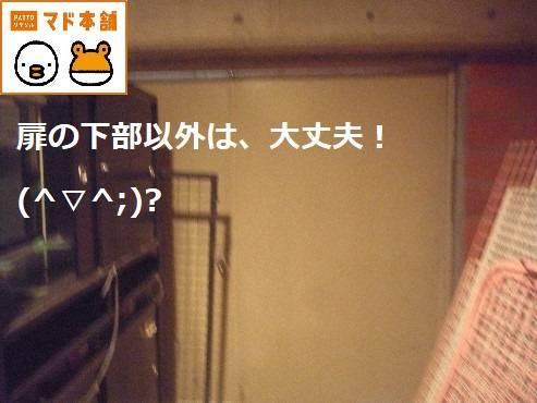 竹原屋本店の★頼まれゴト≫≫≫OK!≫≫いらっしゃい(^O^)/の施工後の写真2