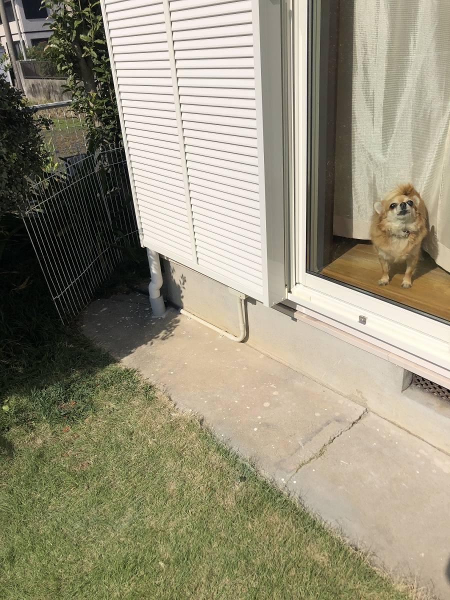 セレックスの窓の交換工事のお客さまの声の写真1